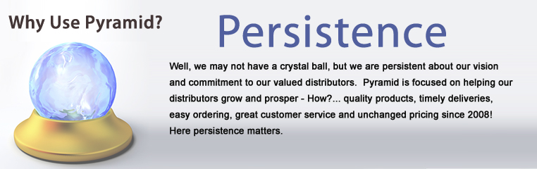 We are persistent about our vision and commitment